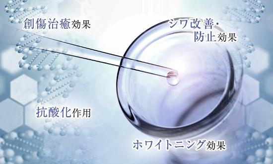 ヒト幹細胞コスメ 効果